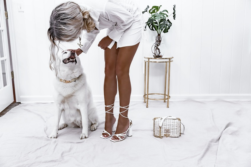 picture of a woman in white sandals, dress and purse, with white dog on white floor with plant on a gold stand and white wall
