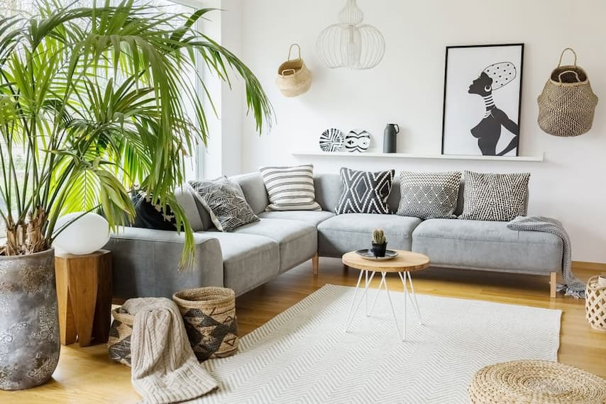 large indoor plants near grey sofa bed with decorative throws and blankets