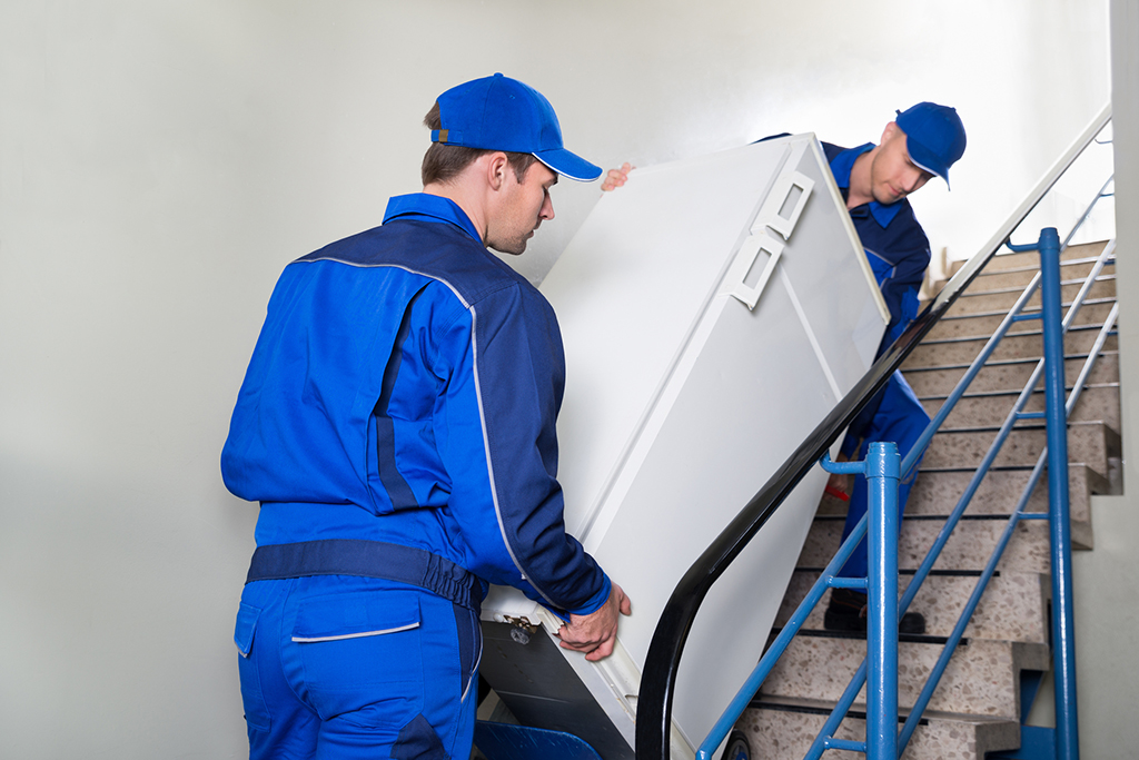 Movers Carrying Refrigerator On Steps with Hand Trolley