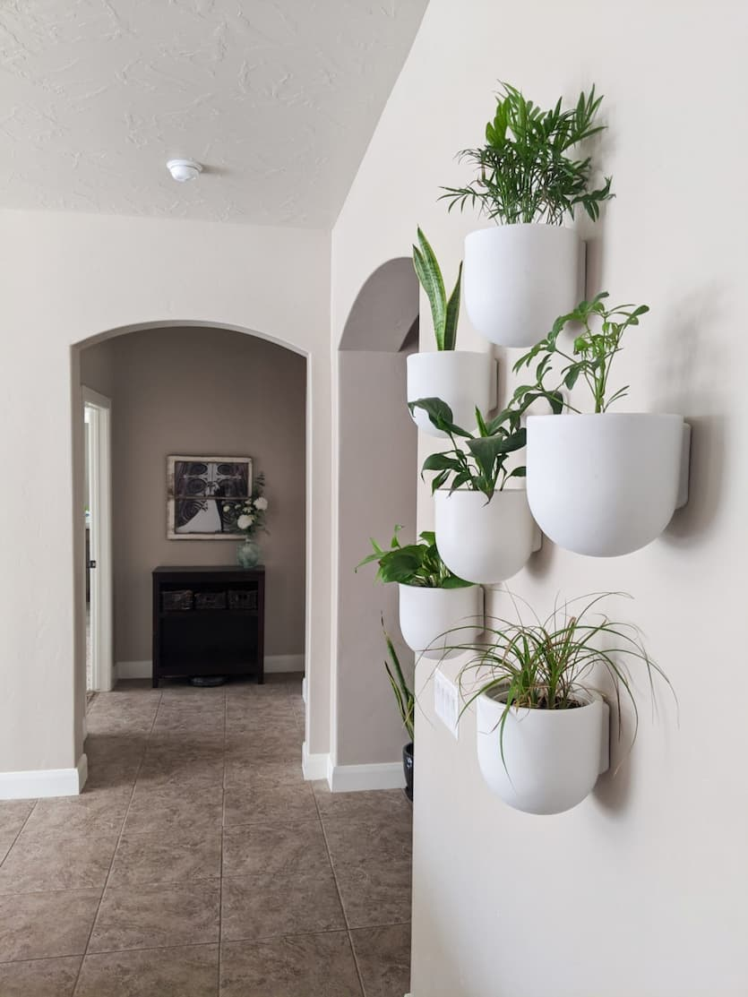white pots with plants in the hall